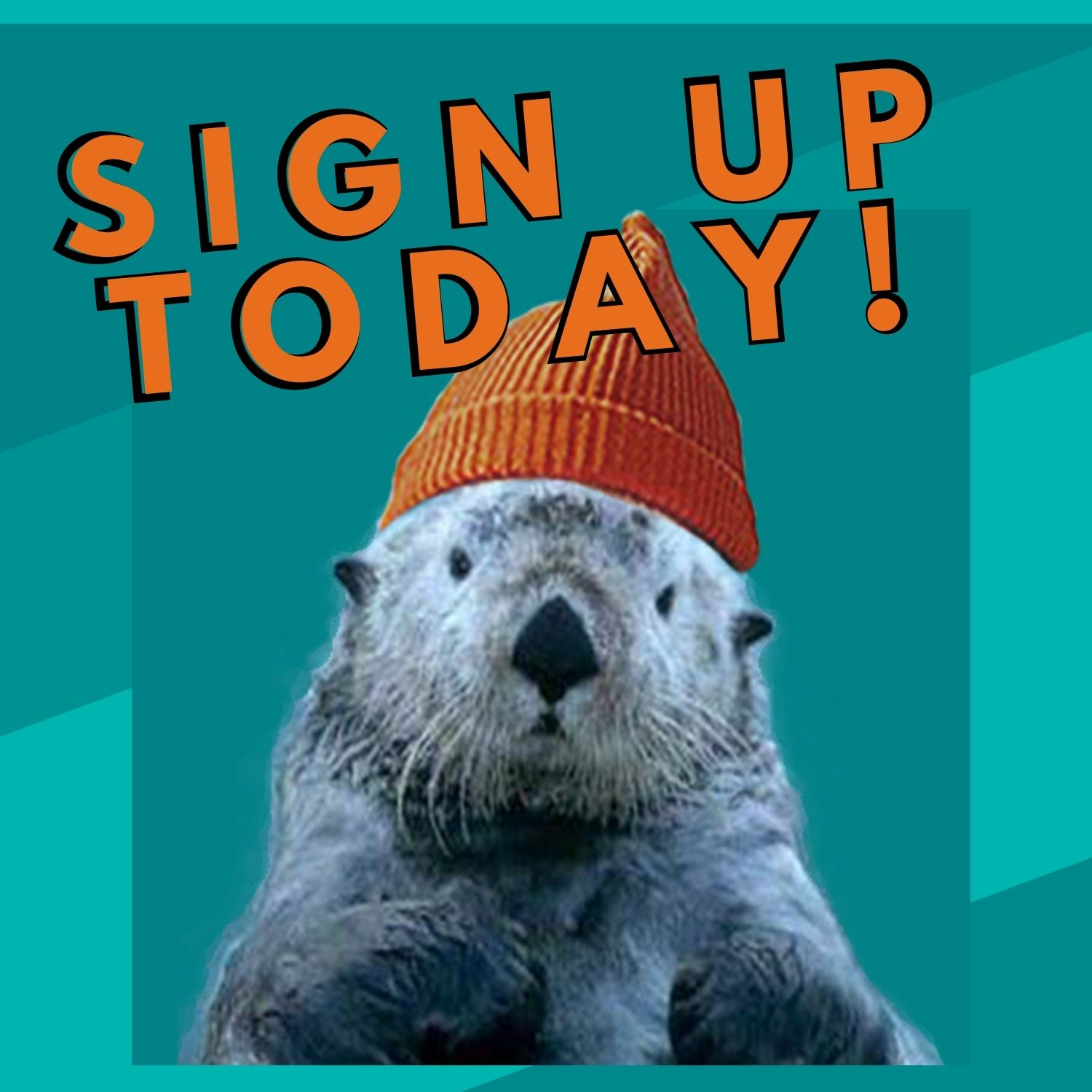 Otter in hat with text reads: Sign up Today!